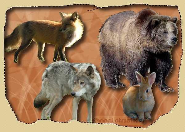 Развитие речи. Сказка колобок. Животные из сказки про колобка.
